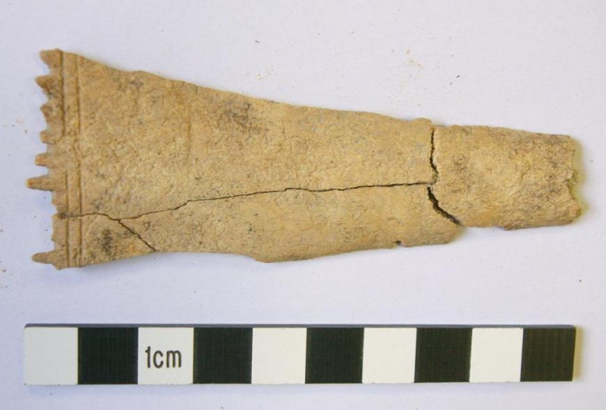 Part of an Iron Age bone comb recovered from a small beamslot that may relate to a weaving structure