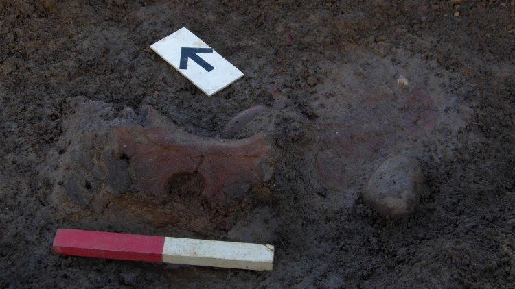 Fragment of a perforated oven plate found in Roundhouse 1