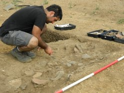 Excavating a deposit of Roman pottery.