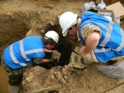 Excavating the base of a well containing large quantities of animal bone.