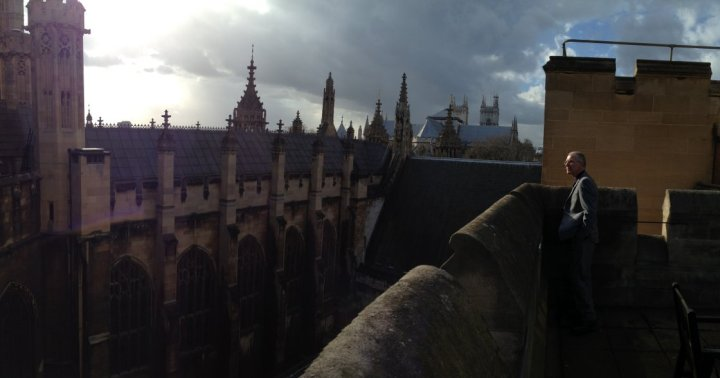 On the roof of the House of Commons.