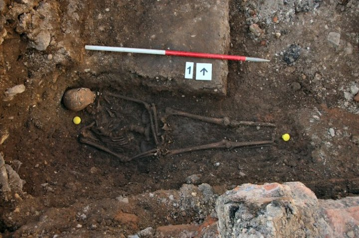 The king's remains in-situ in his grave shortly after their discovery in 2012.