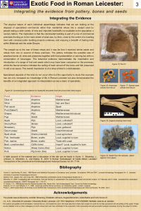 Exotic Food poster 3