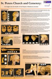 Human bone analysis 2
