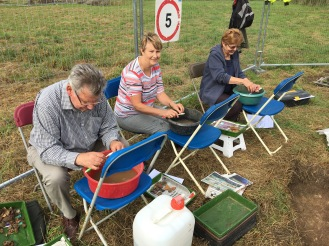 Pot washing, we have bags of finds from Trench 3!