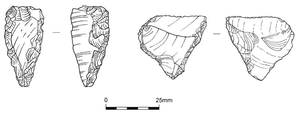 Drawings of Neolithic flint arrowheads from Enderby
